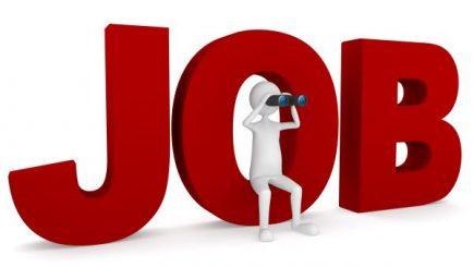 JOBURI. Peste 16.000 de locuri de muncă vacante astăzi în țară