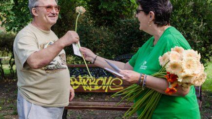 Campanie: Peste 6.000 de flori, pentru o bătrânețe mai frumoasă