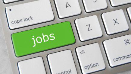 25 de joburi care menţin echilibrul între viaţa personală şi profesională