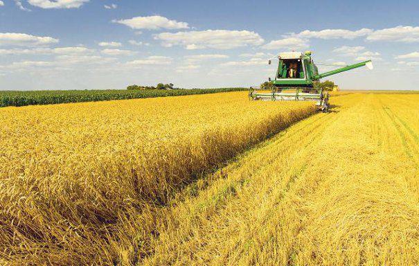 Cât câştigă un ataşat agricol