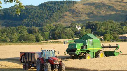 Afacerile în agricultură ar avea un efect pozitiv semnificativ asupra României