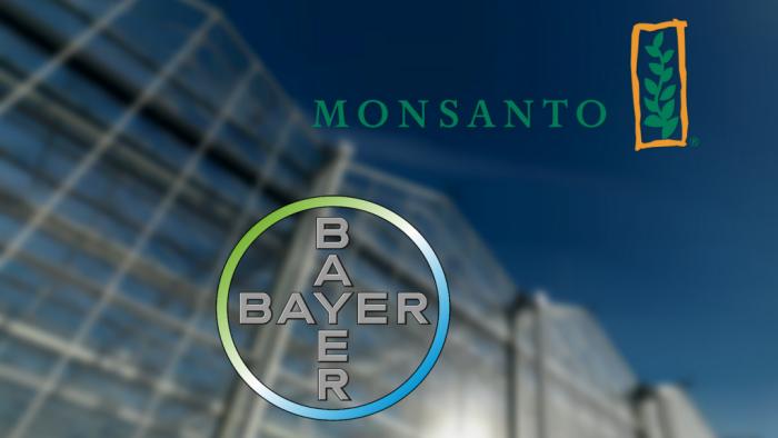 Bayer preia Monsanto, cea mai mare tranzacţie cash din istorie