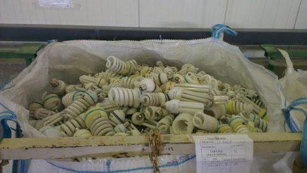 De ce sunt românii codași la reciclarea becurilor. Are legătură cu natalitatea