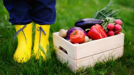 Caietul de sarcini european cu privire la agricultura bio