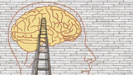 Schimbă chimia creierului ca să crești performanța echipei