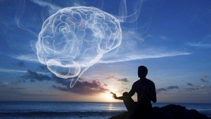 Ce se întâmplă în creierul nostru atunci când ne pierdem concentrarea