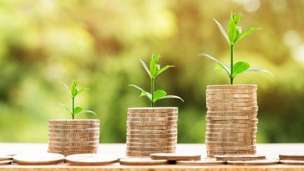 Bugetul Ministerului Energiei a primit aviz favorabil de la comisiile parlamentare de specialitate