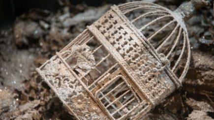 Ordinul Secret al Schimbătorilor de Cadouri