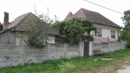 România devine rurală. Corporatiștii migrează la sat