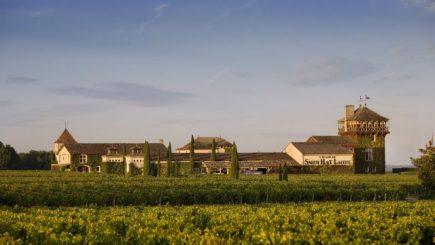 Sportivii de performanţă care au redat viaţa unui celebru domeniu viticol franţuzesc, Chateau Smith Haut Lafitte