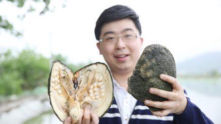 Afacere cu scoici și profit online: Un chinez a câștigat mult cu ajutorul transmisiunilor live
