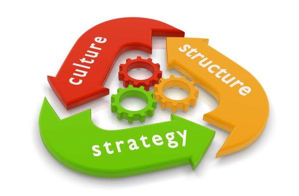 Ce schimbi mai întâi pentru a obţine rezultate spectaculoase: cultura companiei sau procesele obişnuite ?