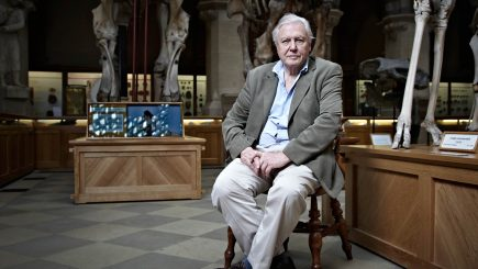 BBC Earth anunță difuzarea documentarului The Hunt