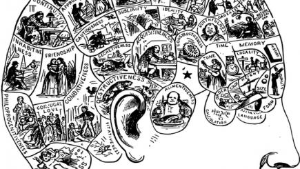 Fenomenul EMERGENETICS. Cum să cunoşti mai bine felul în care oamenii gândesc şi reacţionează