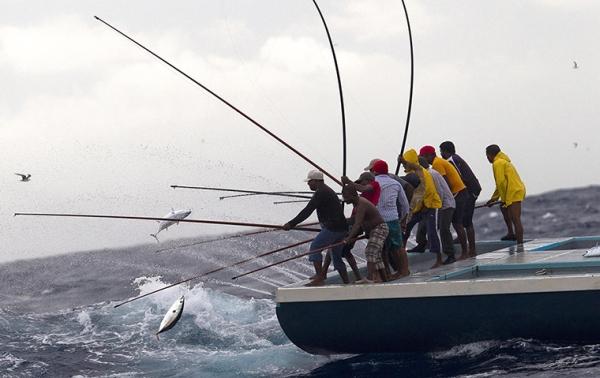 Principiul pescuitului: Ce obții dacă ești manager-coach?