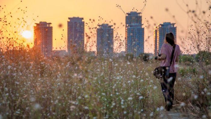 Școala de vară - Fotografie urbană pentru începatori