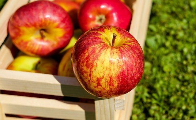 Antreprenorul care vrea să îi determine pe corporatişti să consume fructe proaspete la birou