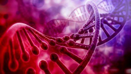 Rol cheie: A fost identificată o nouă genă