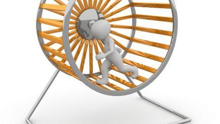 Cum îţi limpezeşti mintea atunci când aleargă ca un hamster într-o rotiţă