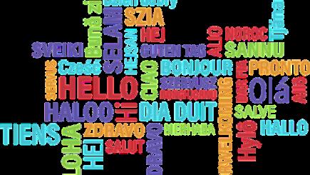 Cum a reuşit această companie din România să scadă rata de refuzare a joburilor pentru vorbitorii de limbi străine