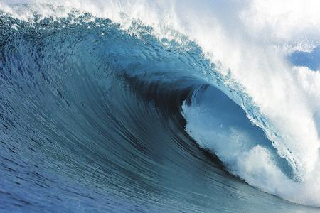 ANTREPRENORIAT: Surf pe valul schimbării