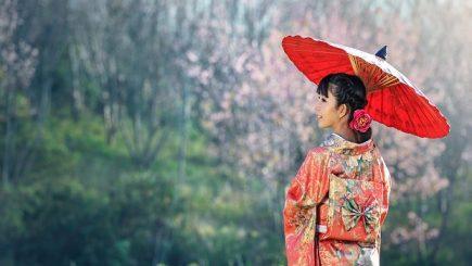 O foarte bună oportunitate pentru români de a fi iniţiaţi în arta japoneză şi, poate, de a găsi noi căi de dezvoltare personală