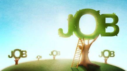 JOBURI. Aproximativ 13.000 de locuri de muncă vacante în toată țara
