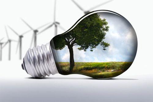 Managementul verde în companii. Tu îl practici?
