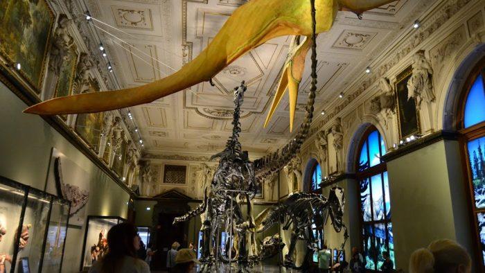 Ziua Internaţională a Muzeelor este azi