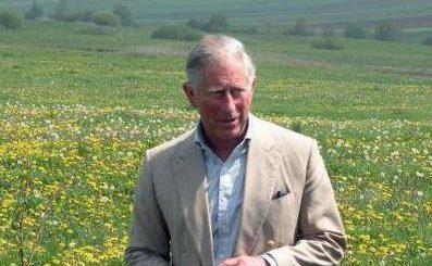 Prinţul Charles şi-a lansat fundaţia la Viscri