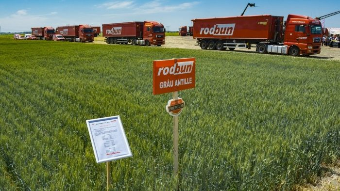 Povestea românilor care au fondat Rodbun, compania care se bate cu multinaționalele pe segmentul soluțiilor pentru fermieri
