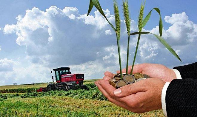 """""""Noi suntem și ne simțim fermieri, nu suntem tânăra mireasă a unui multimilionar!"""". Roadele pasiunii unui business dedicat fermierului român"""