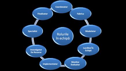 Rolurile din echipă şi cum este perceput liderul în cadrul ei