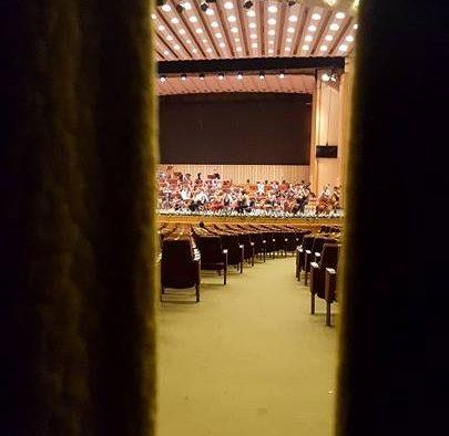 Royal Philarmonic Orchestra, la Sala Palatului, în cadrul Festivalului George Enescu: Despre libertate, liniște și carismă. Portrete artistice de invidiat