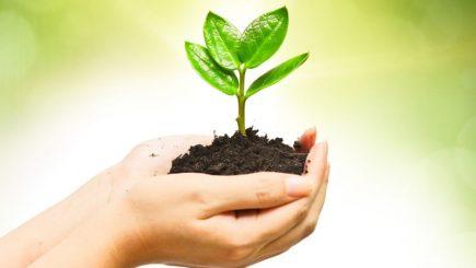 Responsabilitatea ecologică și consecințele lipsei reciclării