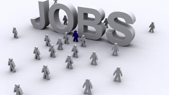 Compania din România care angajează 1.000 de oameni pe an