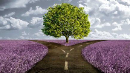 Punctul de cotitură. Experiențele care ne redefinesc și ne reinventează viața (partea a IV-a)