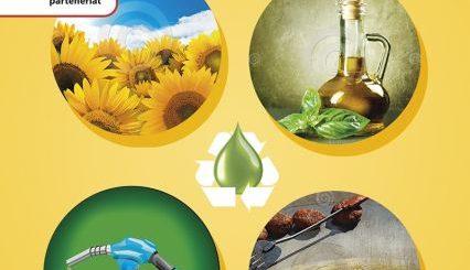 Inițiativă de succes. Mol a colecta peste 600 de litri de ulei alimentar uzat pentru reciclare