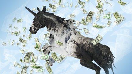 """""""Unicornii"""" și culmile lor amețitoare. Topul universităţilor terminate de fondatorii de companii"""