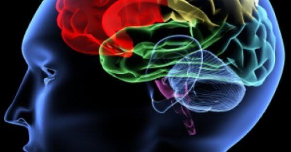 Acestea sunt semnele inteligenței emoționale. Le recunoști?
