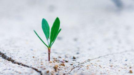 Schimbarea definește un spațiu mai potrivit pentru tine
