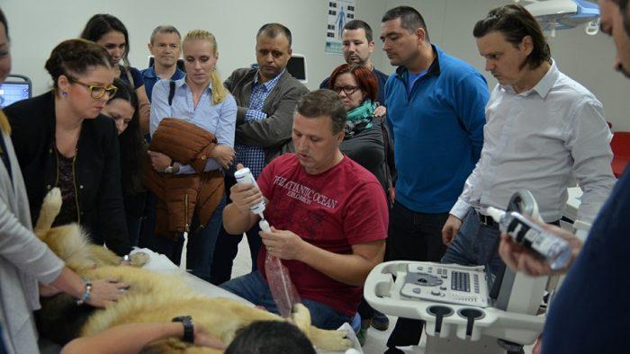 Povestea lui Cristian Bădulescu, veterinarul cu ‹al 6-lea simț›