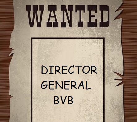 Wanted: Se caută şef la Bursa de Valori Bucureşti