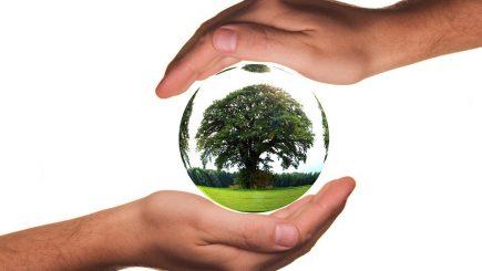 Oportunitatea unică de a combina sustenabilitatea globală și acțiunea locală