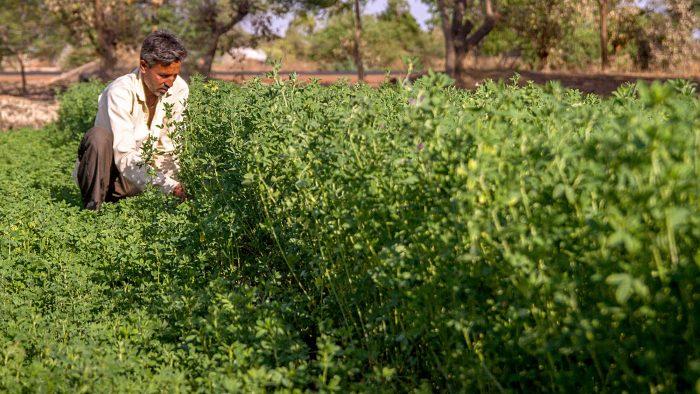 Marius Bostan: Munca este intrinsec legată de iubirea de aproape, nu de distrugerea aproapelui (II)