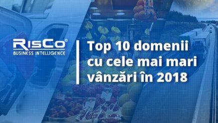 Top 10 domenii cu cele mai mari vânzări în 2018 – românii, campioni la consum