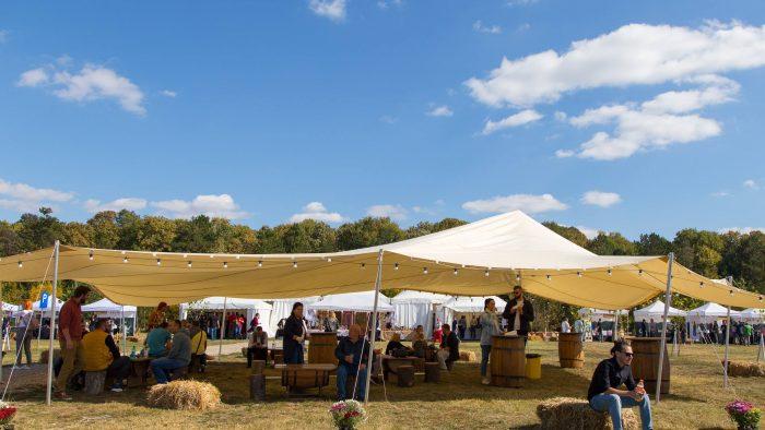 Luna septembrie aduce Festivalul Vinului Moldovei