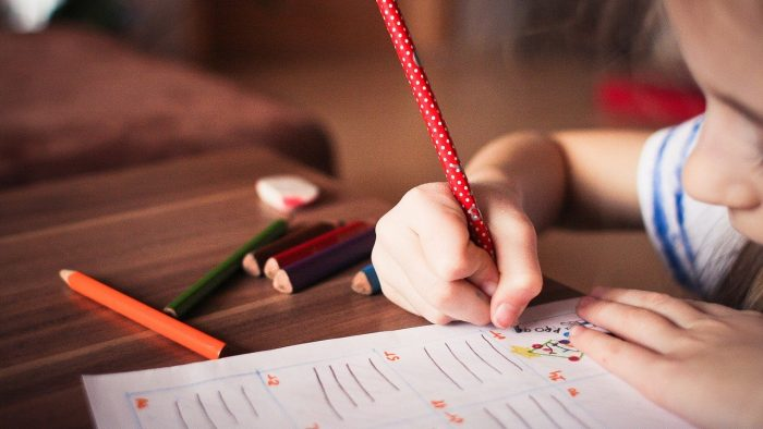 Educație timpurie, primul pas în carieră. Cum să punem accent pe pasiunile copiilor pentru a-i ajuta să devină adulți împliniți profesional